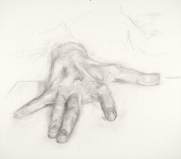 Jeffrey Saldinger Paintings and drawings of my left hand