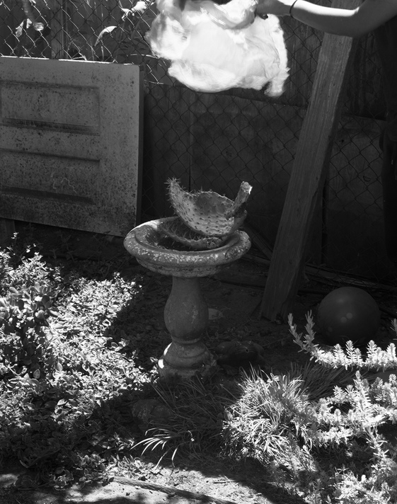 Jennifer Leigh Wright Song Backyard Magic 4x5 Black and White Film