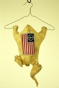 Jeph Gurecka Sculpture/Taxidermy Taxidermied Purdue chicken, patch, clothes hanger, string