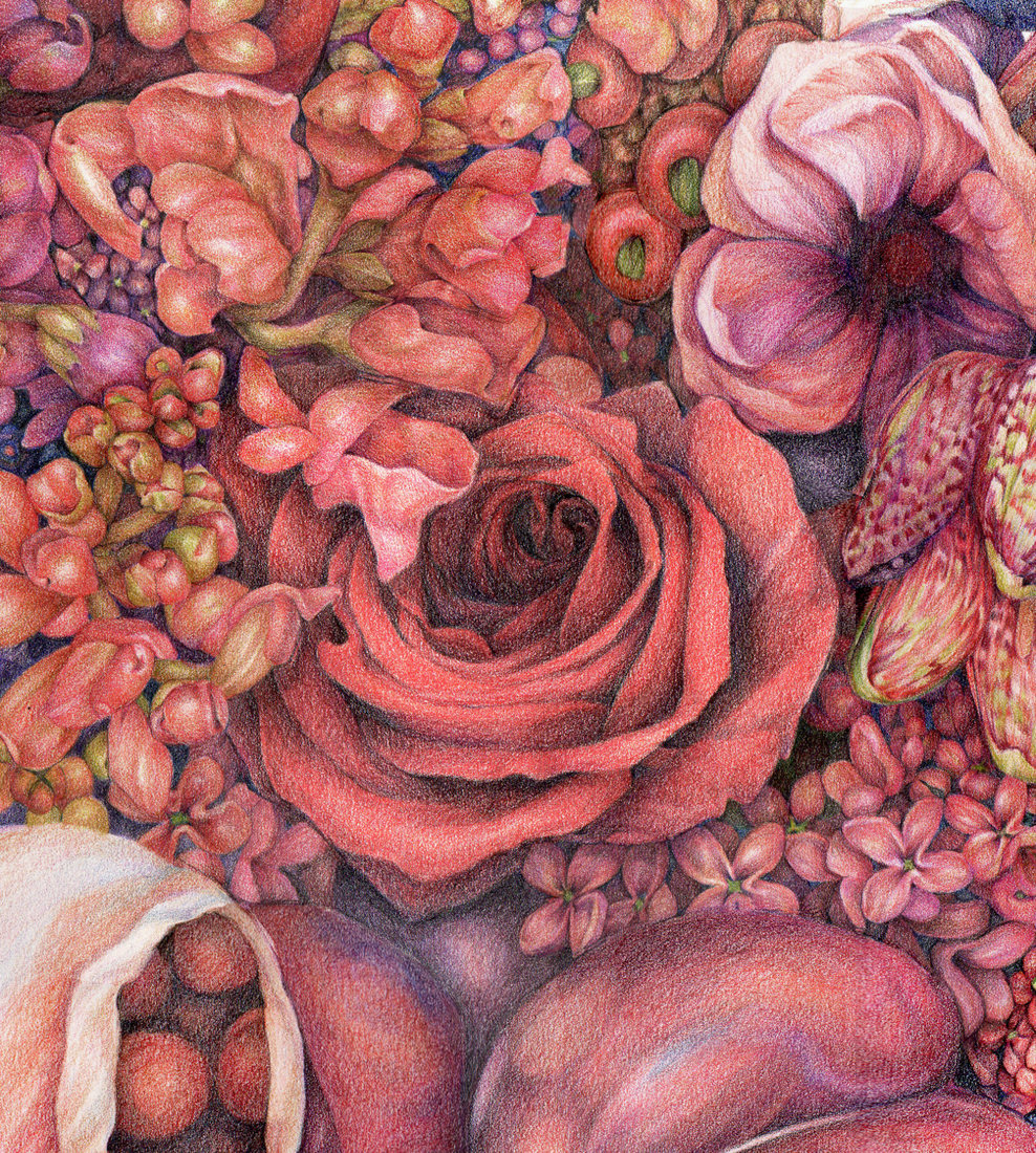 "Jillian Dickson  Color Pencil Drawings: ""BENEATH MY SKIN"""