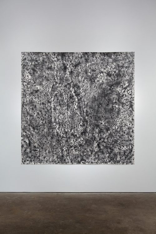 Jill O'Bryan ground (squares) graphite on paper