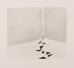 Jodie Manasevit Drawings Pencil on Paper