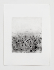 Jodie Manasevit B/W drawings 2017-20 Charcoal and pencil