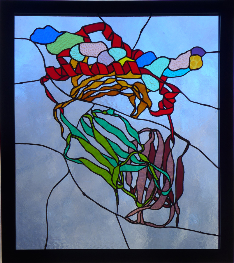 Bio-Stained Glass Tolerance (HLA DR protein with brain peptide)