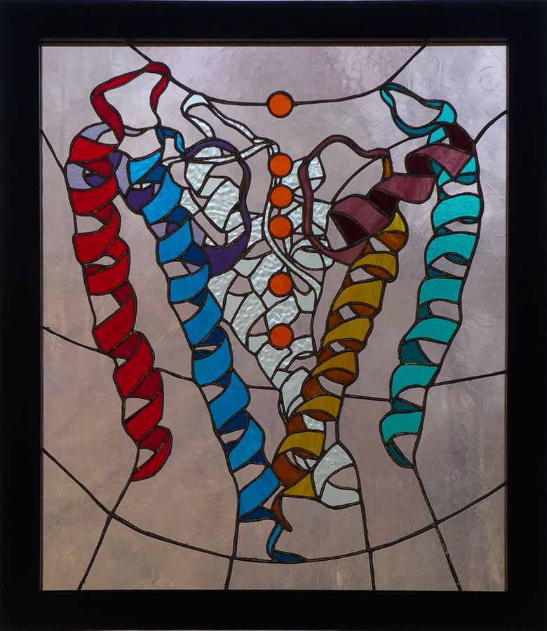 Bio-Stained Glass Passage (Potassium Channel Selectivity Filter)