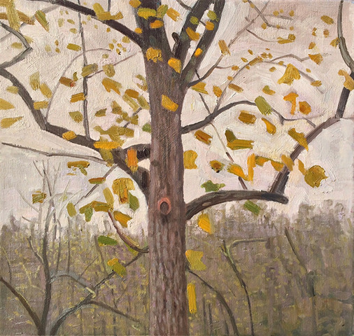 Paintings 2013-2016 Chatwood Grey Day, Tree with Yellow Leaves
