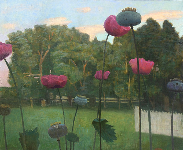 Paintings: 2013 – 2016 Chatwood Poppies at Dusk