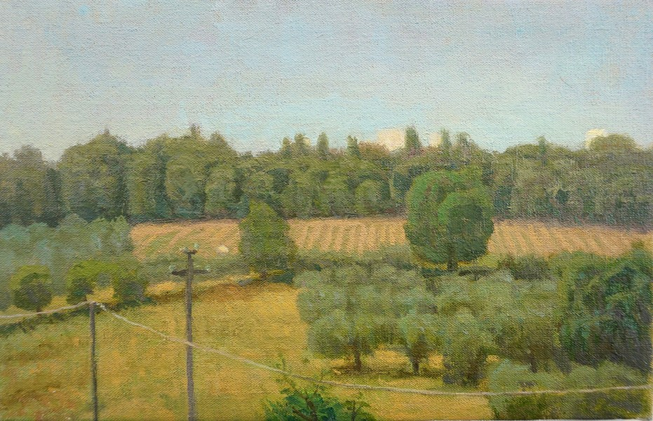 Paintings 2017-2020 Hillside Olive Trees and Vineyard