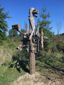 "John T Adams A site-specific sculpture - ""Alley Arms"" Found (utility pole) Objects"