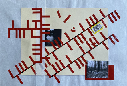 John T Adams Quarantine Projects - 2 Photographs, found objects and vinyl tape