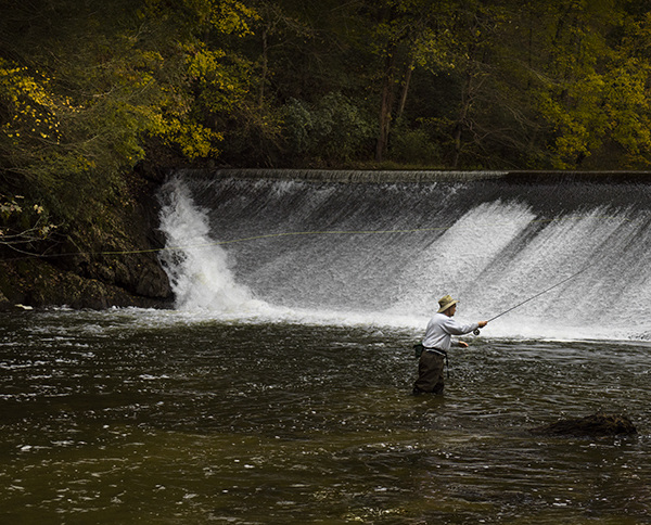 Landscapes Gallery Fly Fishing 3:  Follow Through of the Delivery  ©