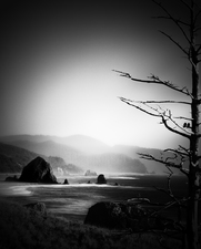 Cannon Beach, Haystack Rock and Ravens  ©