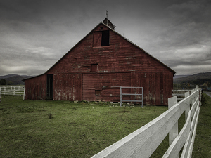 Red Barn and White Fence Series:  Fence Along Side  ©