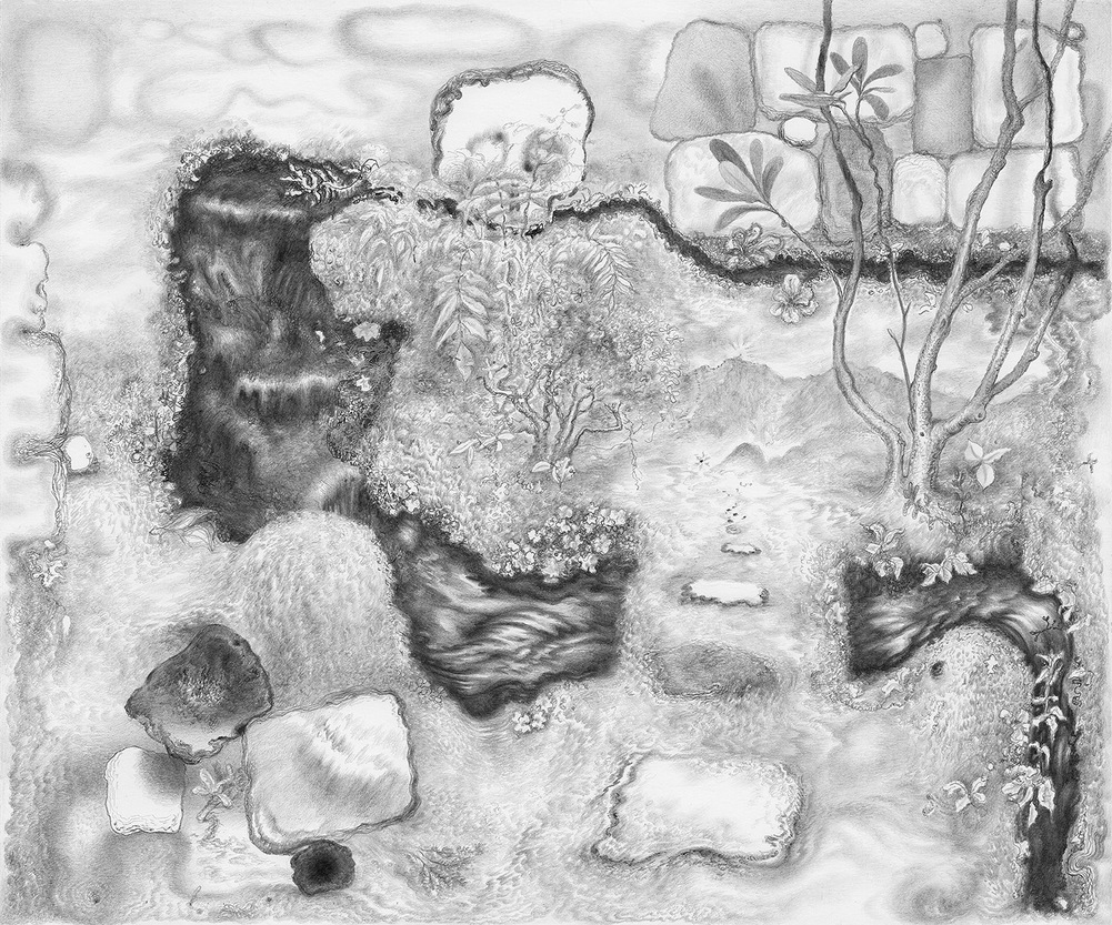 Paper Garden, 2017 Bend, 2017, graphite on paper, 11 x 13 inches