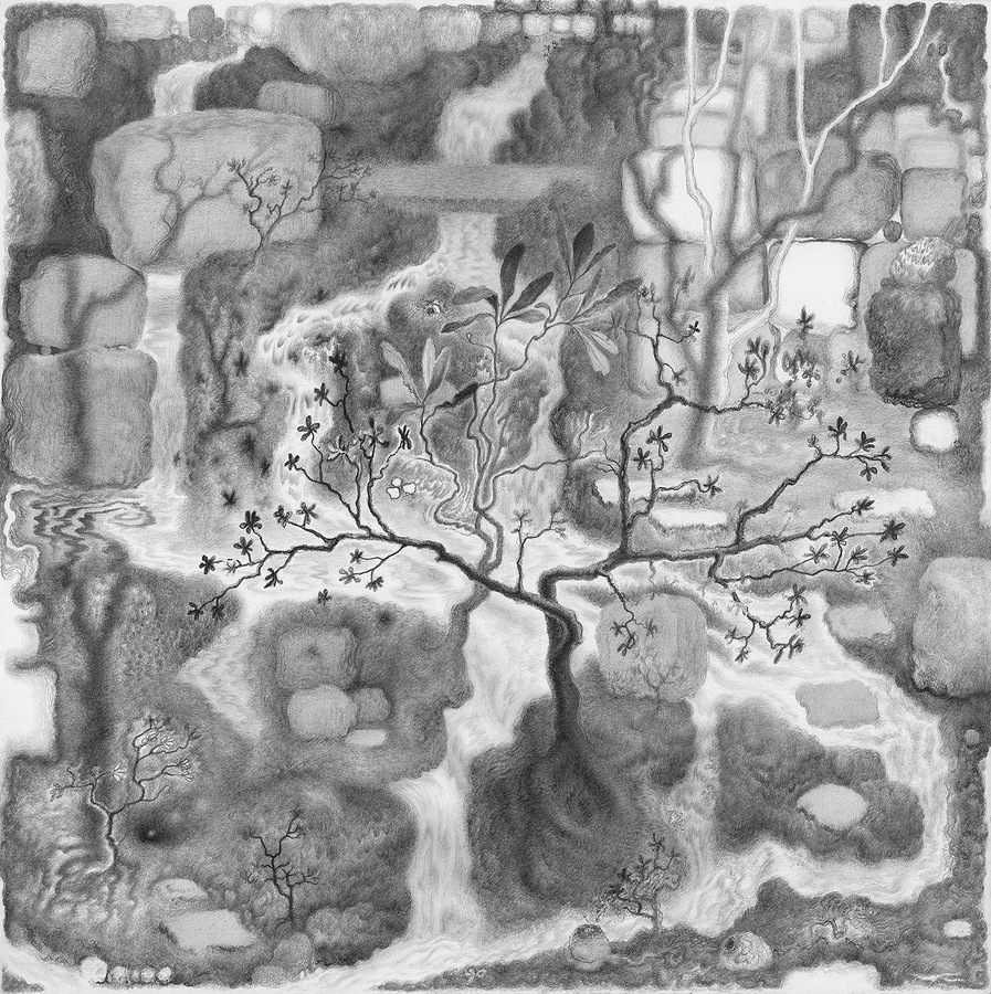 Paper Garden, 2017 Common Cause, 2017, graphite on paper, 11 x 11 inches