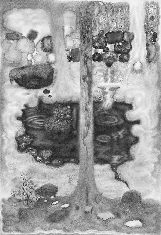 Paper Garden, 2017 Dark Pond, 2017, graphite on paper, 14 x 9.5 inches