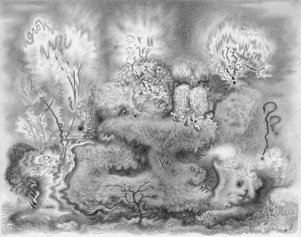 Paper Garden, 2017 Cloud's Edge, 2017, graphite on paper, 5.5 x 7 inches