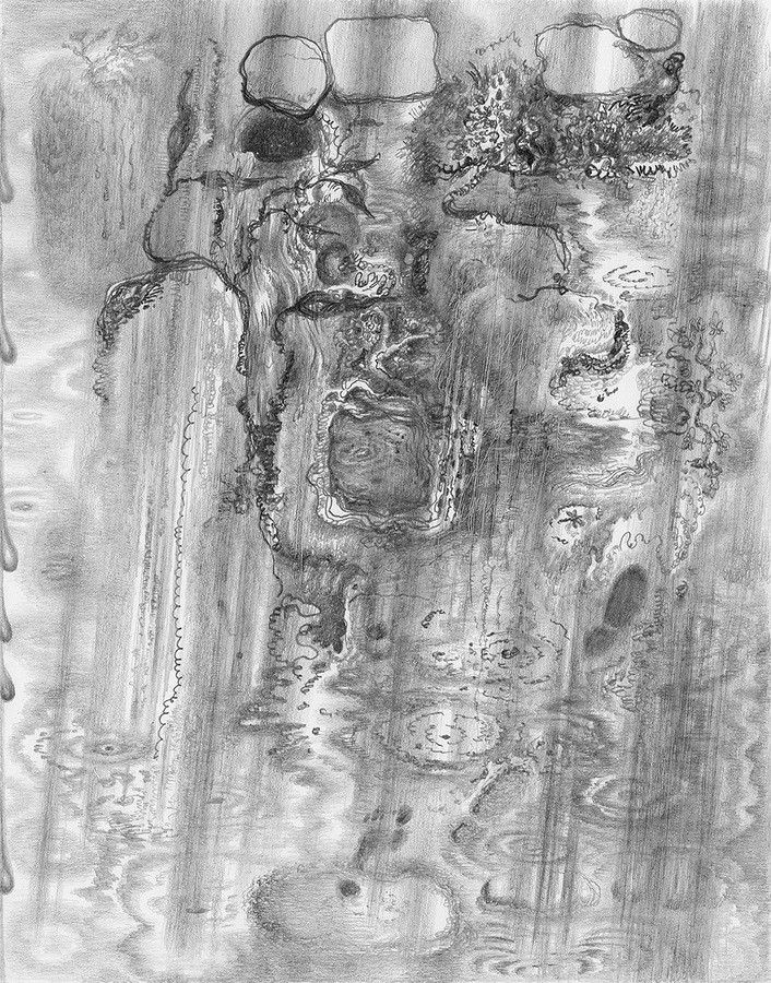 Paper Garden, 2017 Rain, 2017, graphite on paper, 7 x 5.5 inches