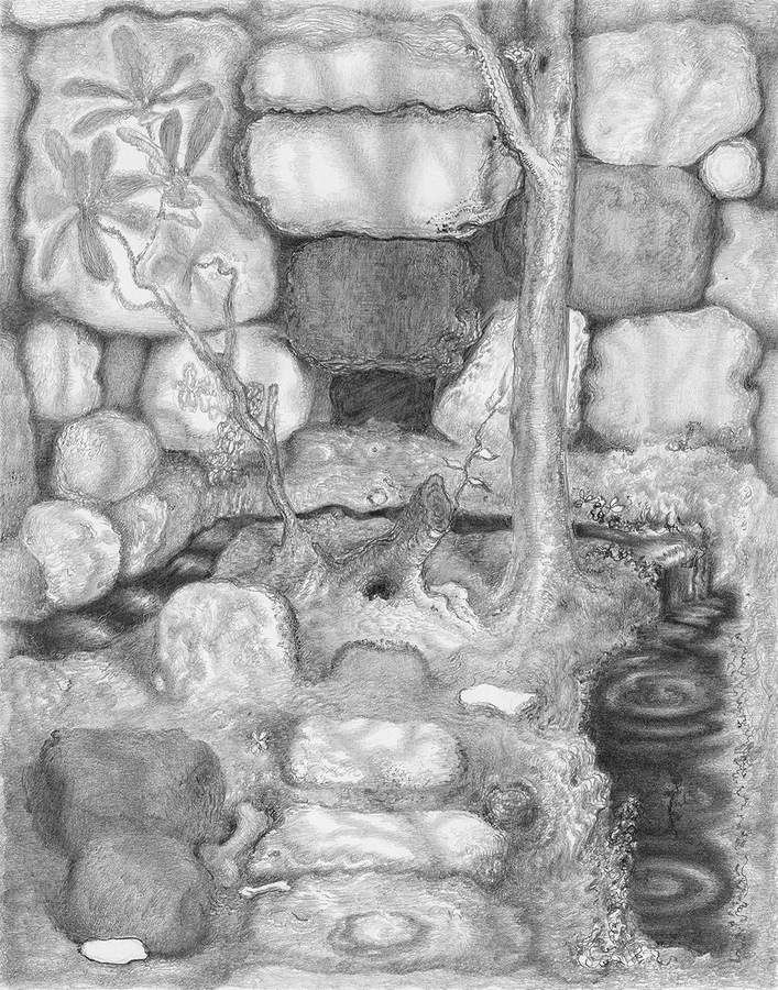 Paper Garden, 2017 Set, 2017, graphite on paper, 7 x 5.5 inches