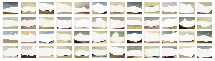 Julie Weber Undisclosed Typologies 48 found chromogenic prints, partially removed emulsion; mounted to Dibond