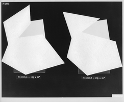 Julie Weber Undisclosed Typologies found gelatin silver print, partially removed emulsion