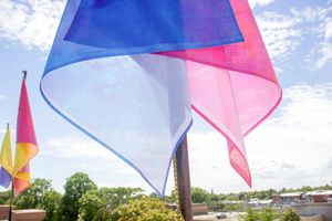 Julie Weber Flags 4 semi-transparent vinyl-mesh flags