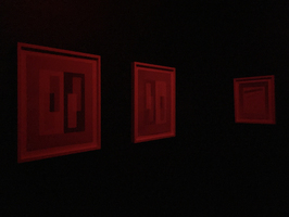 Julie Weber Dark Adaptation lightproof room, black latex wall paint, 4 framed unfixed photograms, red safelight bulb, tungsten bulb