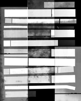 Julie Weber re | process gelatin silver photogram