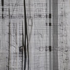 Karen V. Neems Grid Series mylar, screening, fencing, paper, pen and photocollage