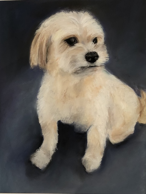 Karen Schlansky  Animal paintings Pastel on paper