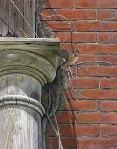 KARIE O'DONNELL Oils Barn Swallow