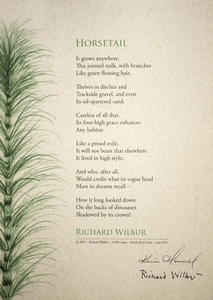 Karie O'Donnell Poetry Broadsides Richard Wilbur