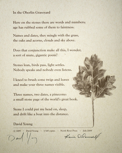 Karie O'Donnell Poetry Broadsides David Young