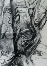 Kate Emlen Drawings and Monotypes Charcoal