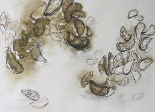 Kate Emlen Drawings and Monotypes Walnut Ink and gouache