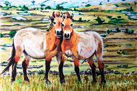 Paintings on Paper Wild Horses