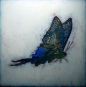 KATHY FEIGHERY Bugs & Butterflies oil on canvas