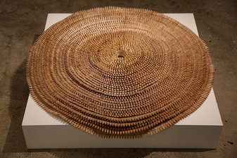 Katlin Evans Sculptures   clothespins and sinew