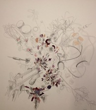 Katlin Evans Drawings graphite and watercolor on paper