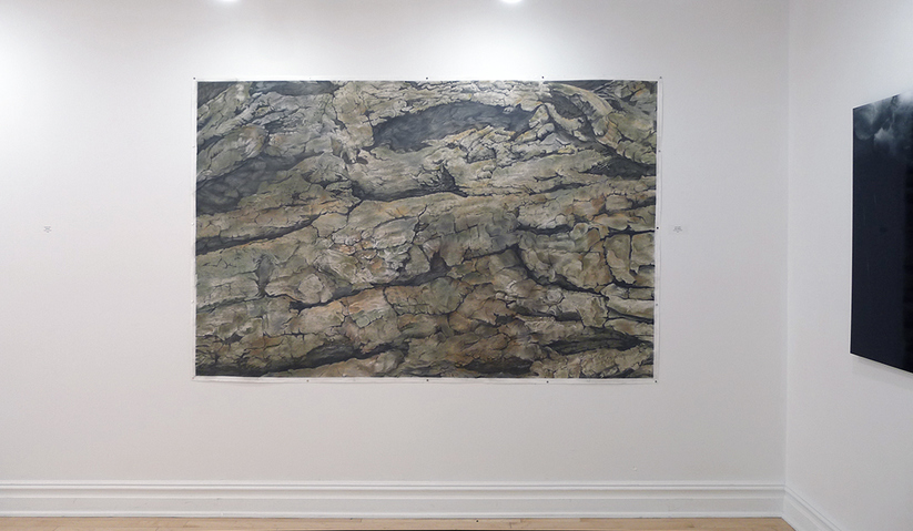 exhibition photos drawing titled Salix/Willow, installed at the Center for Contemporary Art in Bedminster, NJ, part of Synthesizing Nature group exhibition, curated by Wes Sherman and Cory E. Card, 2017.
