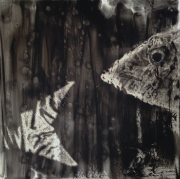 Kathy Cotter FISH oil on panel