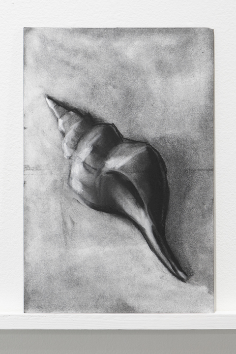 Kelley Harwood 2021-2018 Charcoal on panel