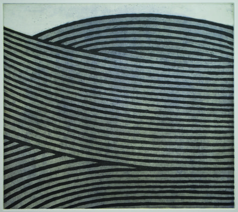 Kevin Bowman Prints Line Etching, Soft Ground, Aquatint printed from three copper plates