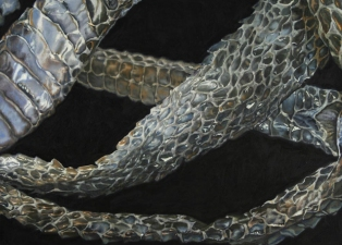 Kevin Klein Snakes oil on canvas