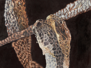 Kevin Klein Snakes Acrylic on Canvas