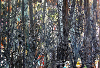 KURT LIGHTNER Collage Landscapes 2004-06 Acrylic ink on Mylar collaged onto watercolor paper