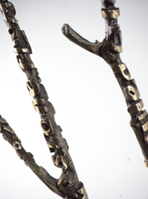 KURT LIGHTNER Branches Bronze