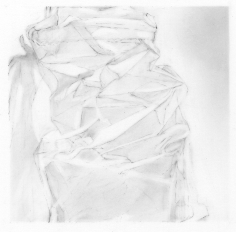 Leigh Ann Hallberg Cereal Bag Books and Drawings Graphite on Mylar