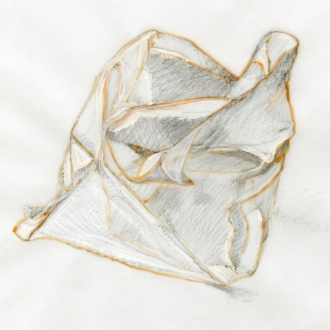 Leigh Ann Hallberg Cereal Bag Books and Drawings Ink, Graphite, Gesso, on Vellum
