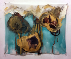 Laura Bell Selected Mixed-Media Works Acrylic, ink, charcoal, and photos (rhino, seashells) on both sides of vellum tracing paper